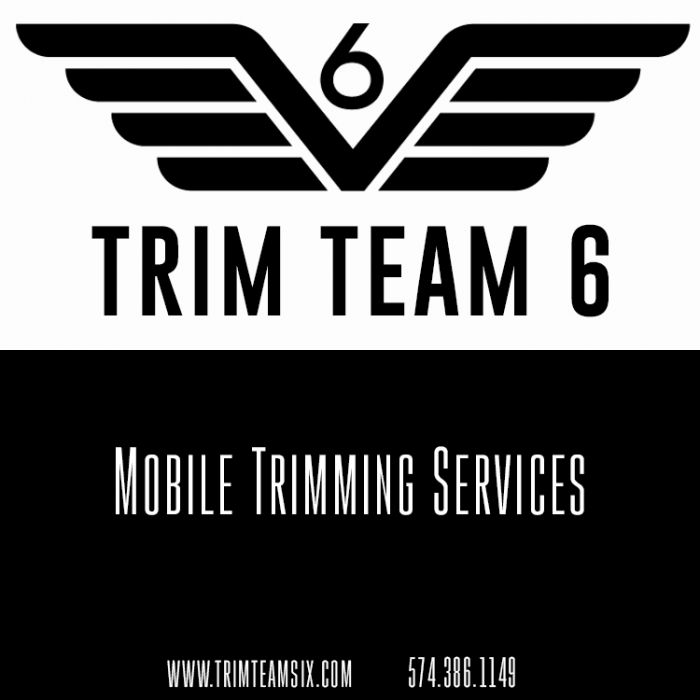 Trim Team 6 in Niles - $250 Certificate for $125