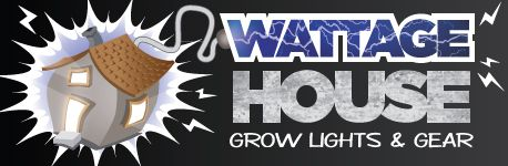 Wattage House in Niles - $25 Certificate for $12.50