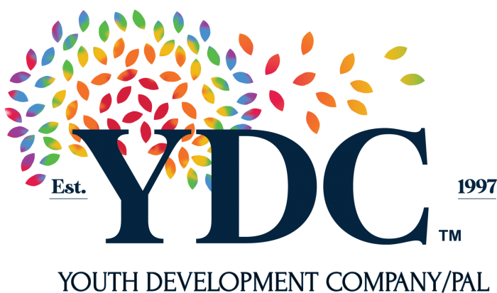Youth Development Co. - $200 Certificate for $100